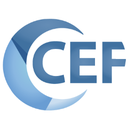 chromium embedded framework: Libcef.dll